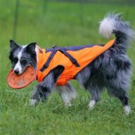 Windproof Dog Coats 06-0982